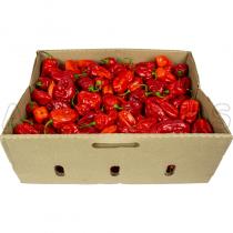 Fresh Hot Pepper Box